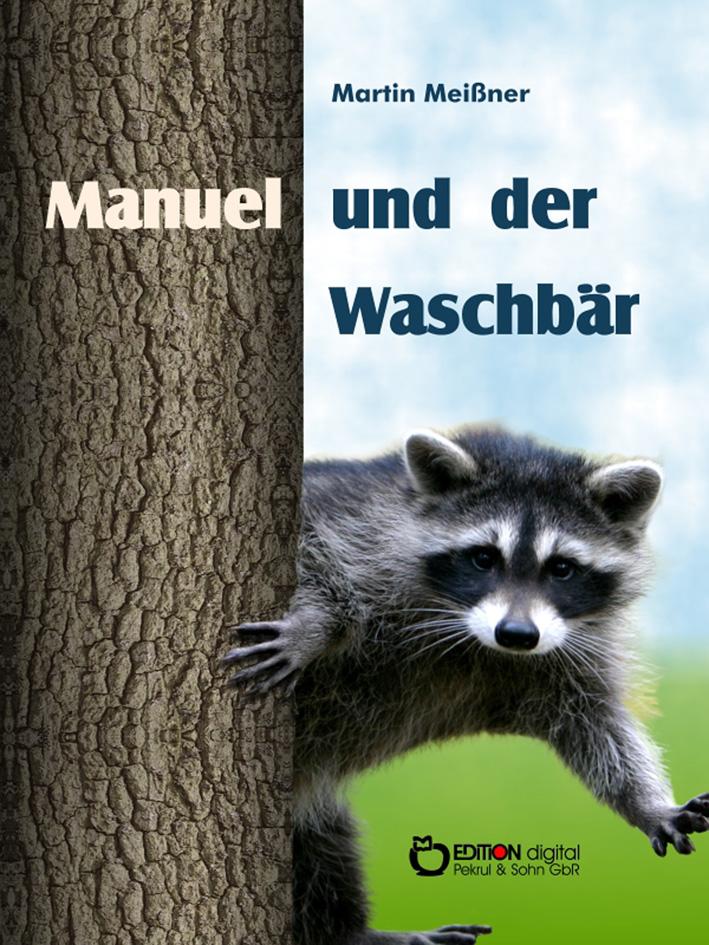 Mehr Aufmerksamkeit für Außenseiter - E-Book-Kollektion zum 70. Geburtstag von Martin Meißner