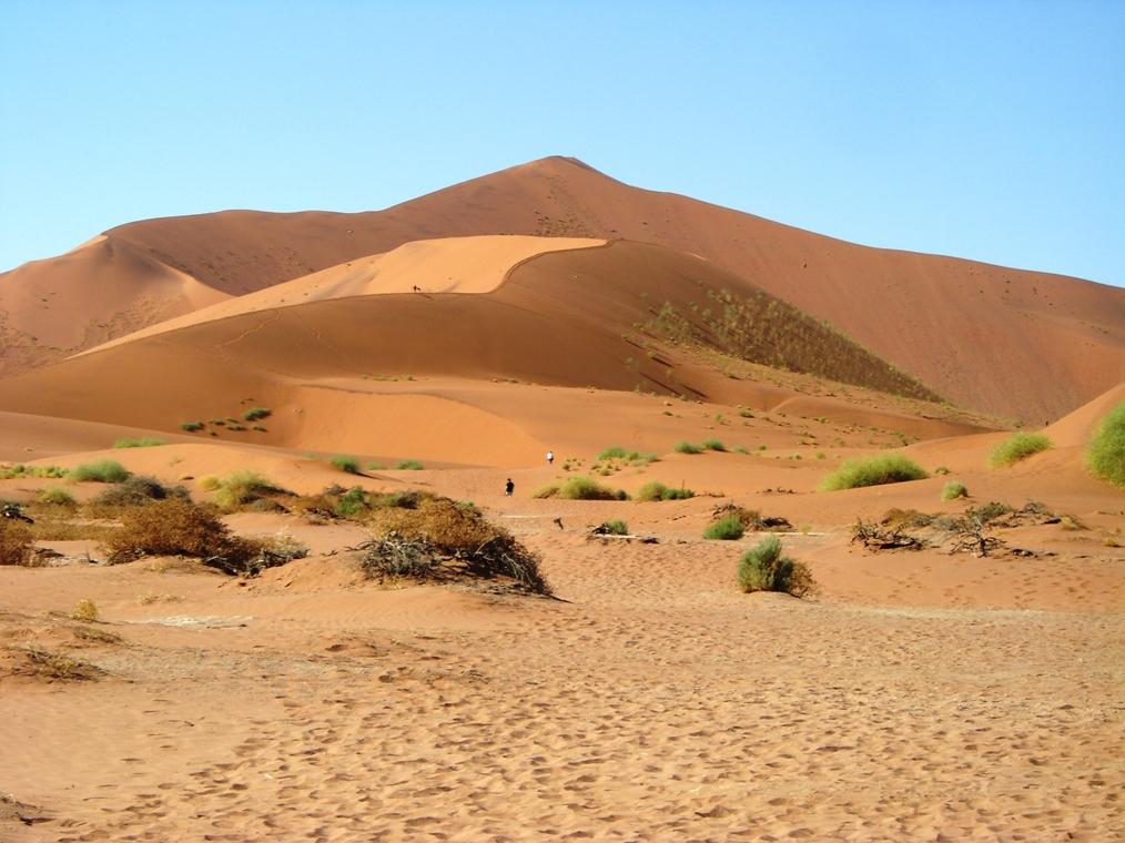 Follow Us Erlebnisreisen schickt seine Kunden in die Wüste