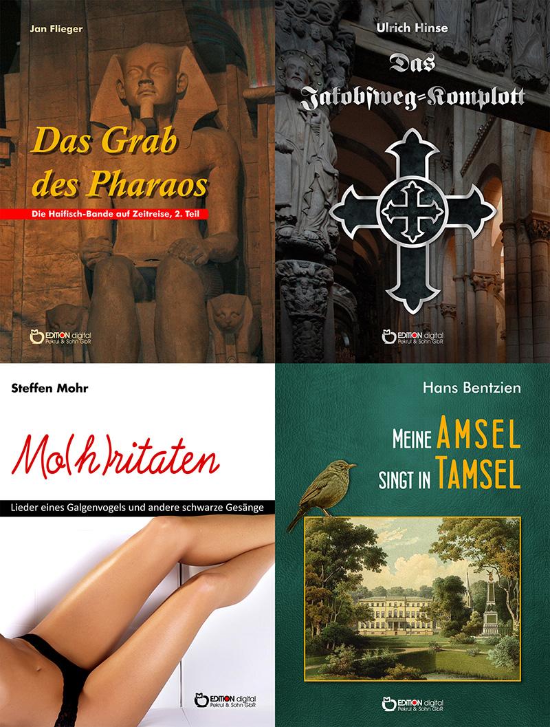 Ehrenrettung für Frau Fontane – Zehn E-Books von Freitag bis Freitag zum Sonderpreis -